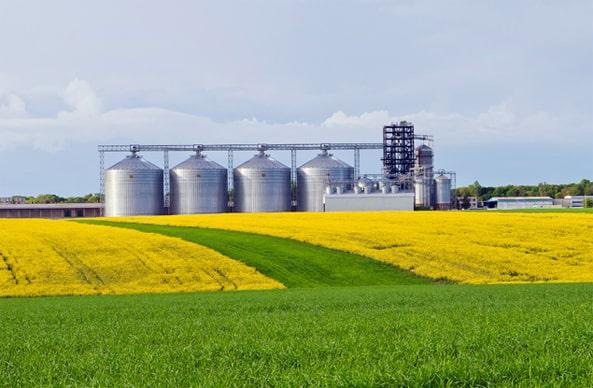 rolnictwo_dziaman